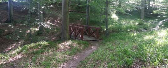 Nørreskov bro